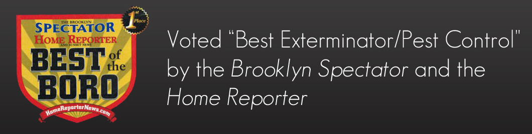 voted best of boro pest control afederal exterminating brooklyn nyc
